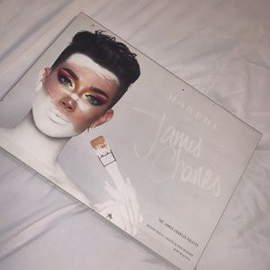 brand new morphe X James Charles pallet!